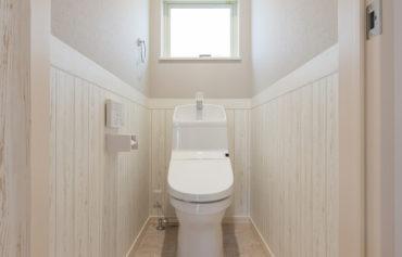 可愛らしい明るいトイレ