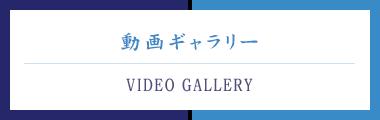プライムホーム 動画ギャラリー
